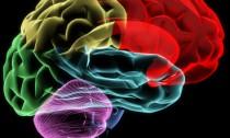 Múltunk feltárása az agyhullámainkkal