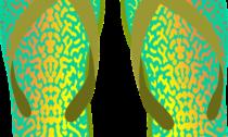 ferfi-papucs
