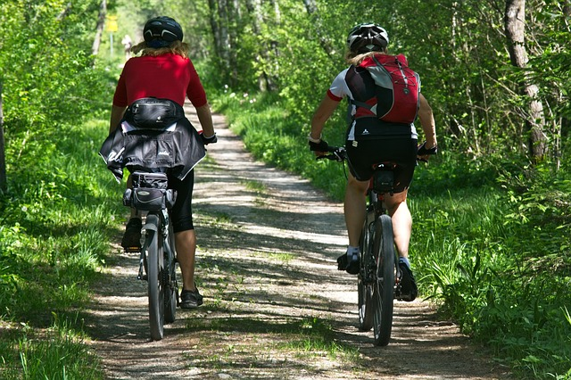 Kerékpártúra az erdőben